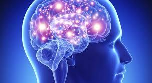 cérebro Neuroplasticidade tratemento medico